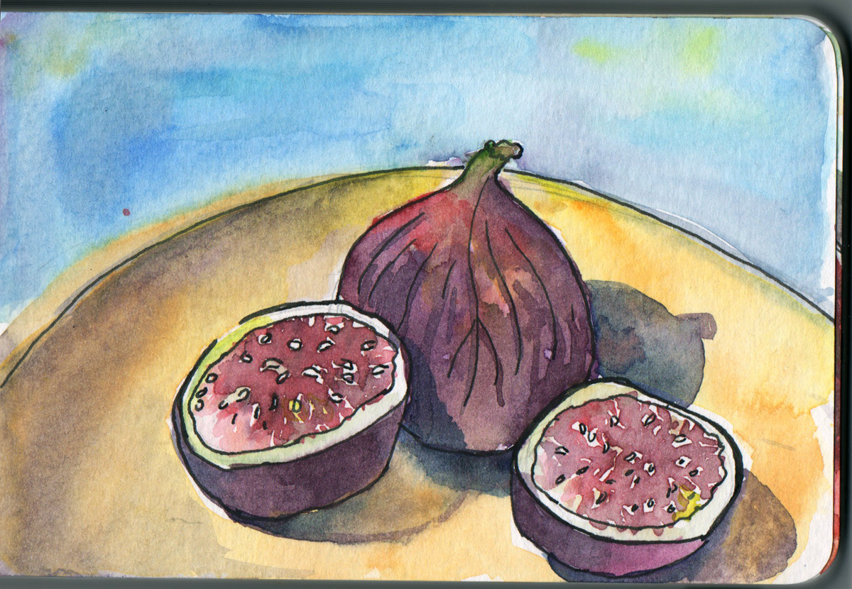Figs in watercolour and pen in small moleskine sketchbook
