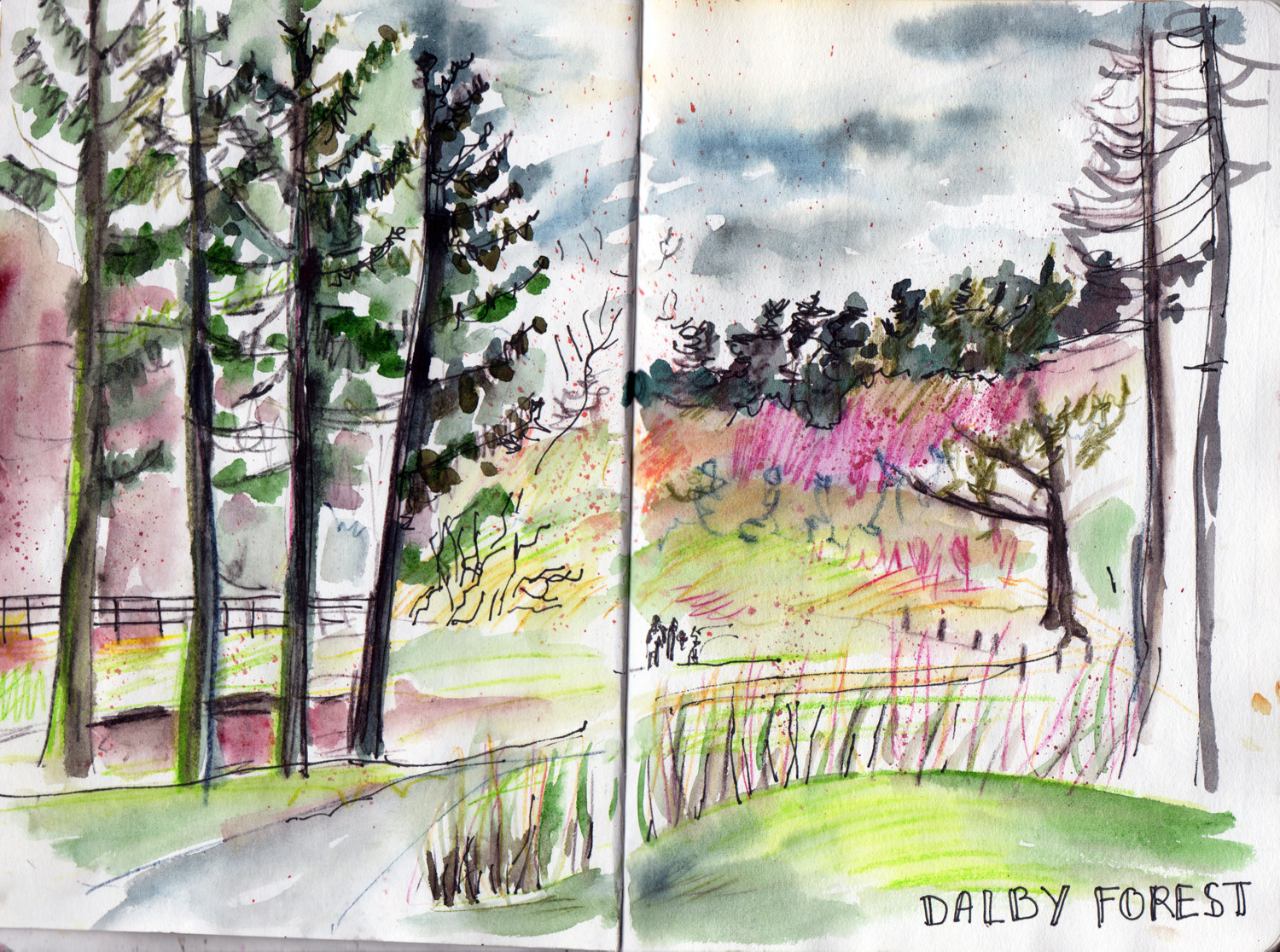 Darby forest Pen and Watercolour sketch by Sophie Peanut