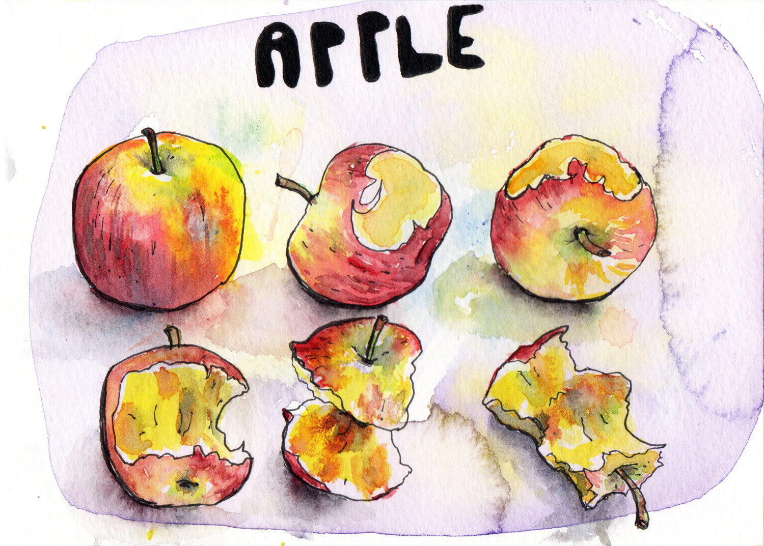 Daily Drawings Apples in Pen and Watercolour by Sophie Peanut