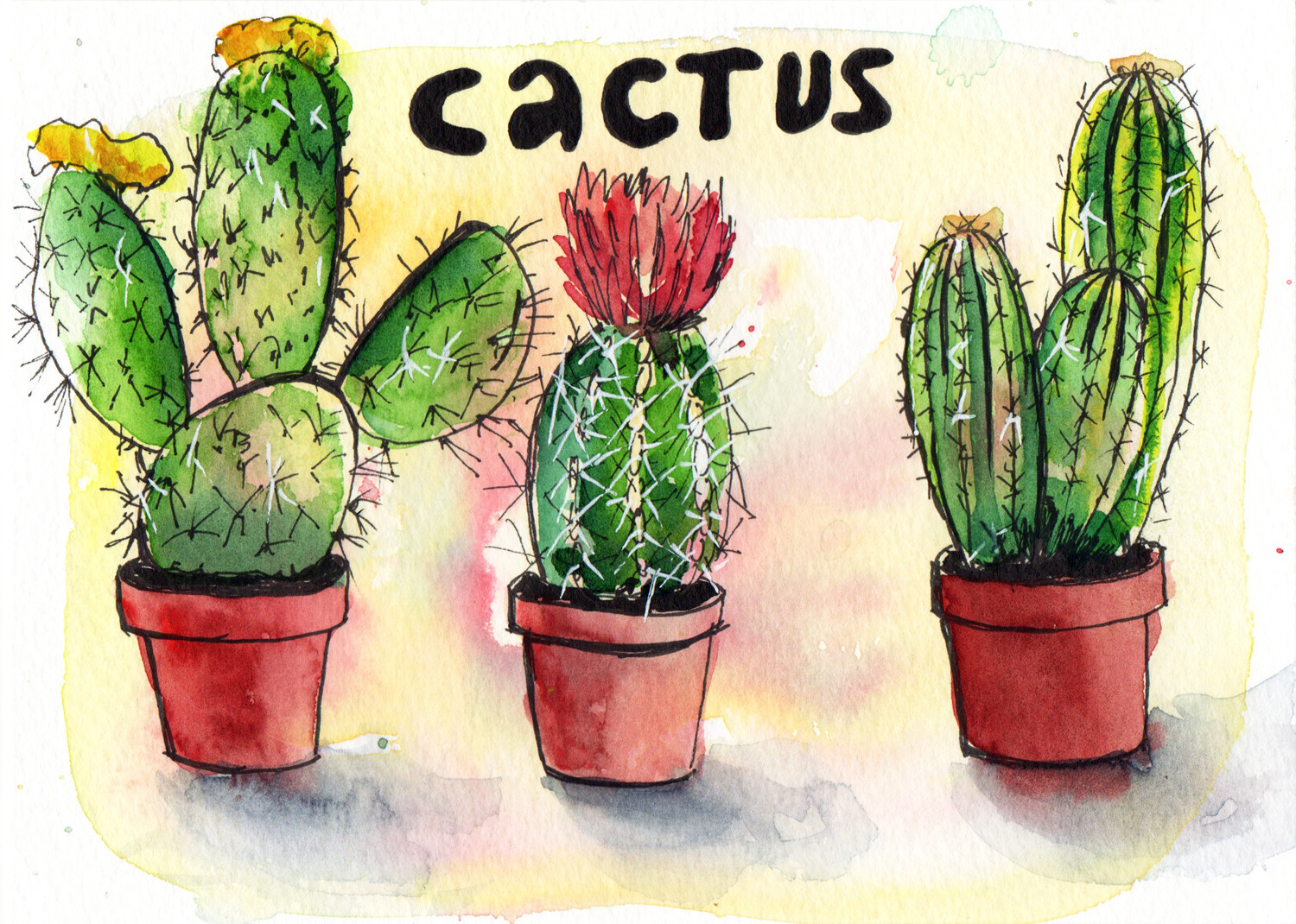Daily Drawings by Sophie Peanut - Cactus in pen and watercolour
