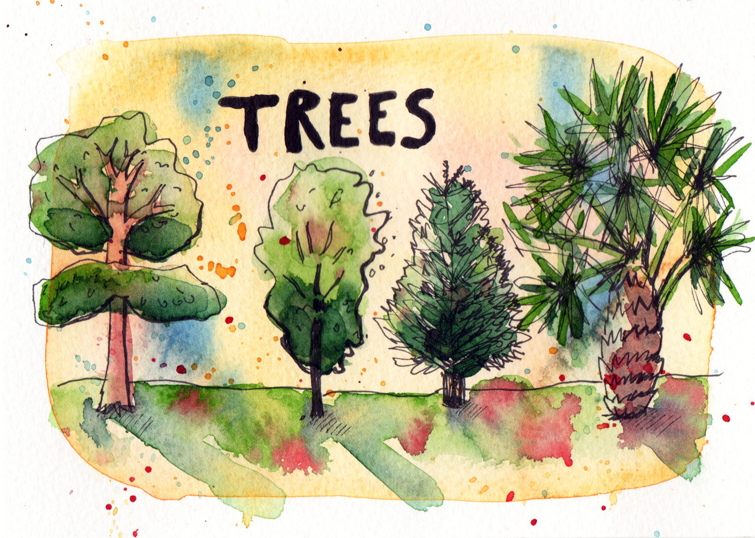 Daily drawings in Pen and Watercolour Trees by Sophie Peanut