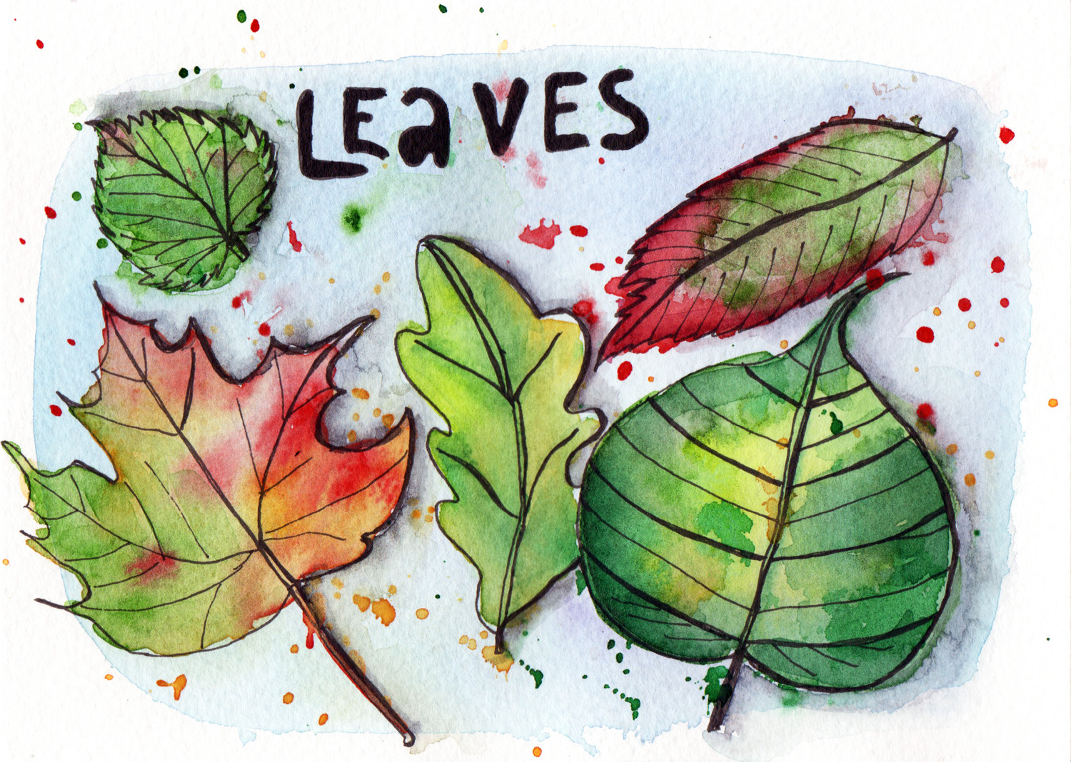 Daily drawings in Pen and Watercolour Leaves by Sophie Peanut