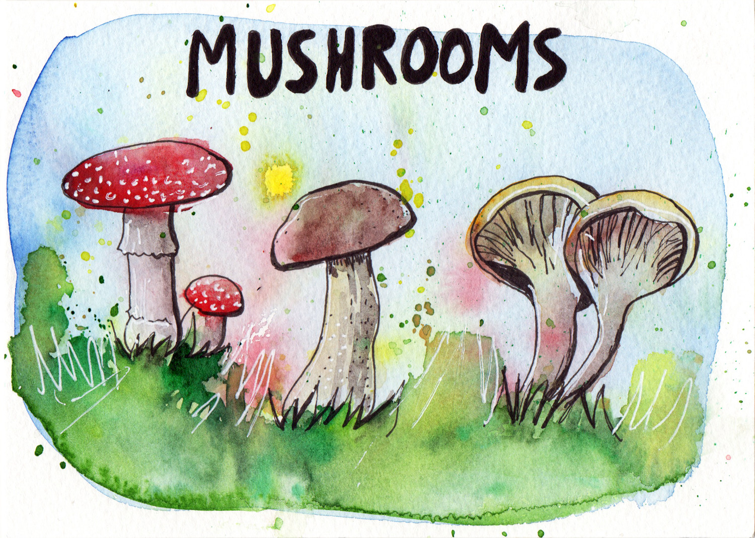 Mushroom in pen and watercolour by Sophie Peanut