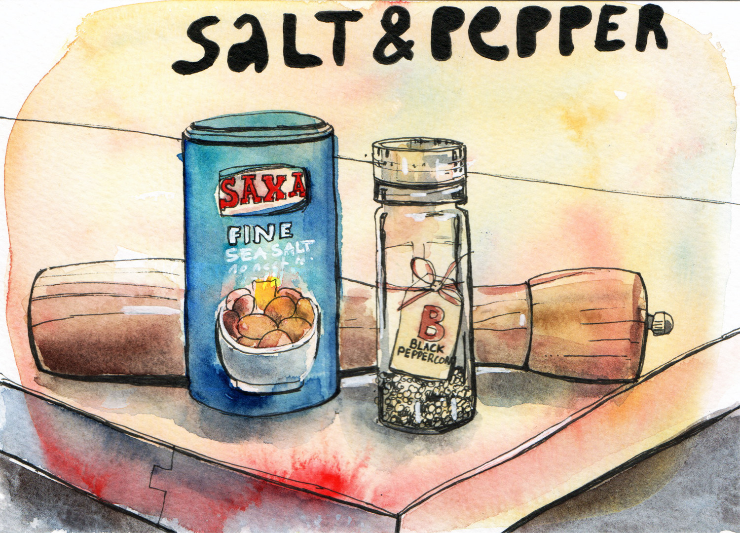Daily Drawings Salt and Pepper in Pen and Watercolour by Sophie Peanut