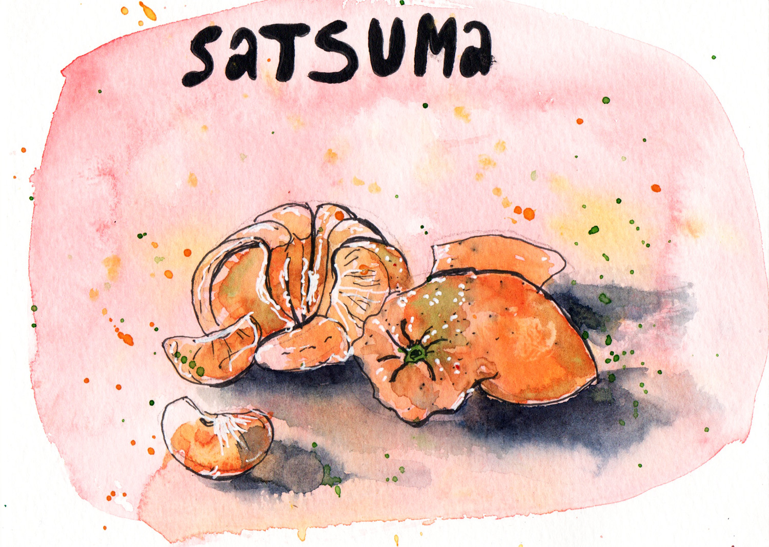 Satsuma Watercolour demonstration on painted background