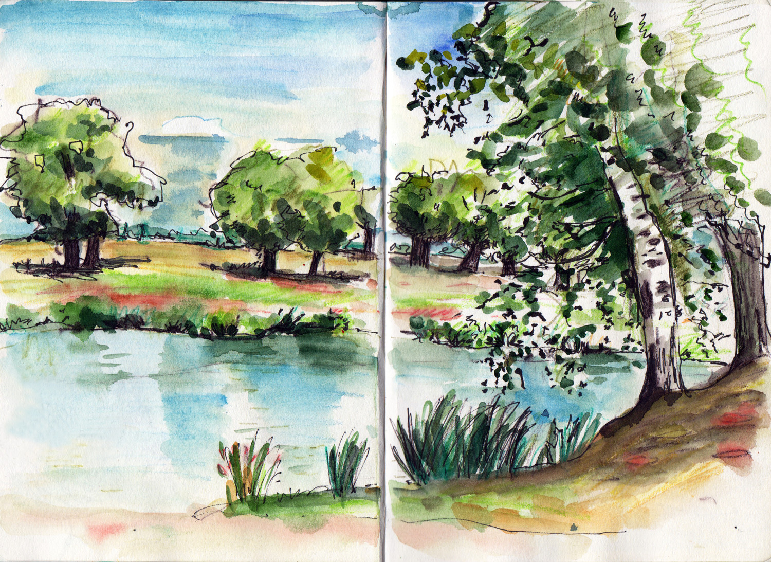 Sketching water by Sophie Peanut - Lac de St Hilaire France