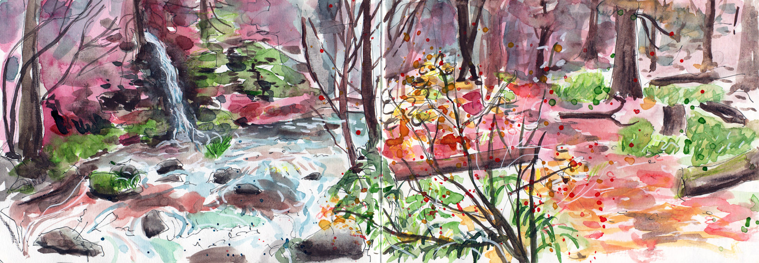 Hardcastle Crags - Hebden Bridge - Sketching Autumn in Water colour by Sophie