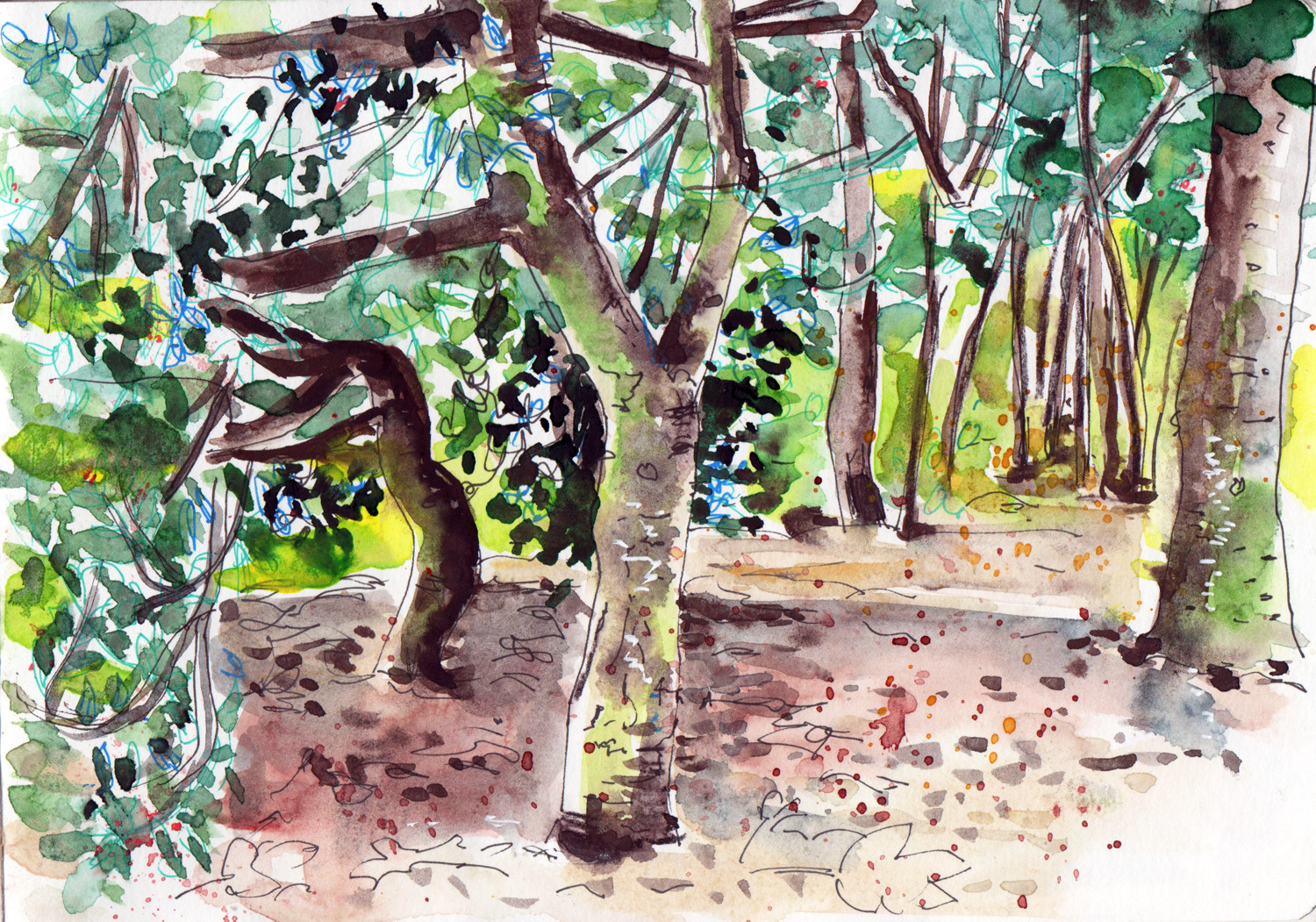 Manor Heath Park - Halifax - Pen and watercolour