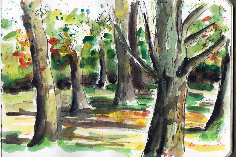 Under the trees Manor Heath Park Halifax - Autumn Scene by Sophie Peanut