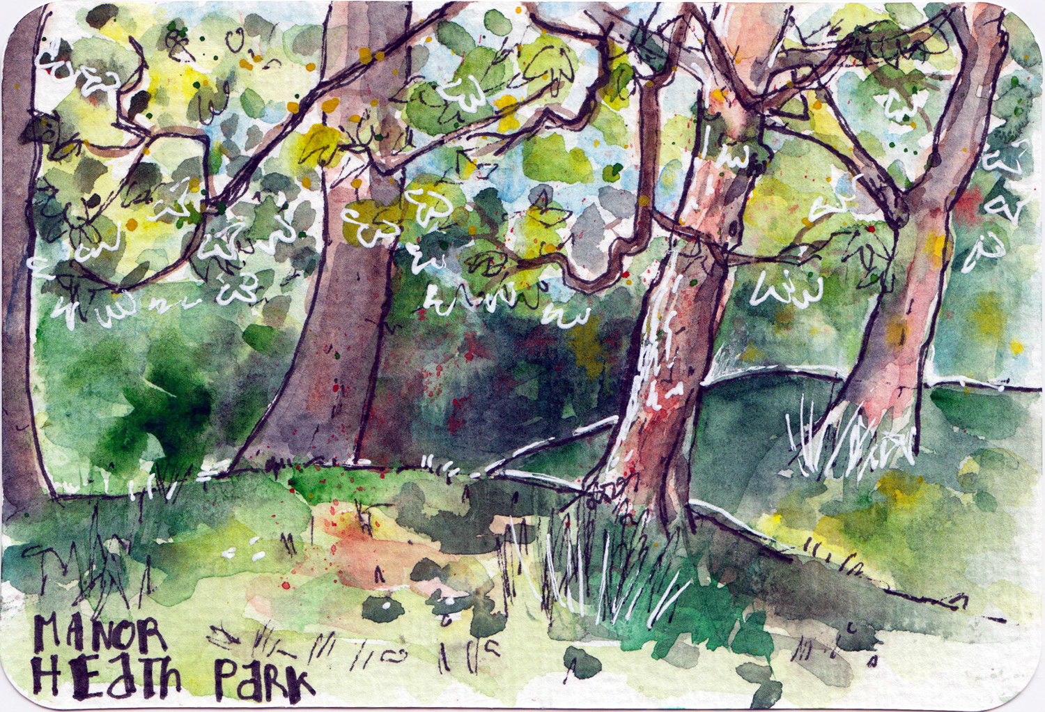 Trees in Spring watercolour and pen sketch on postcard by Sophie Peanut