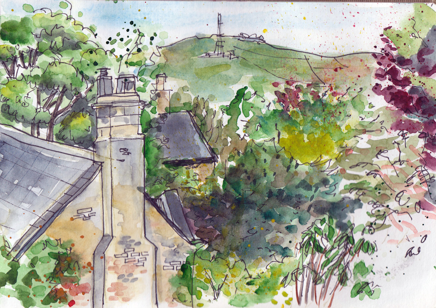 View from the top floor window - Spring Drawing by Sophie Peanut
