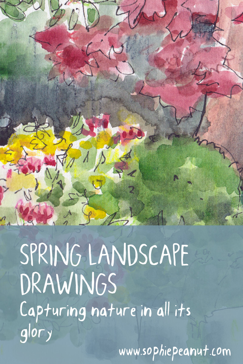 Spring Landscape Drawings and Watercolour Paintings by Sophie Peanut