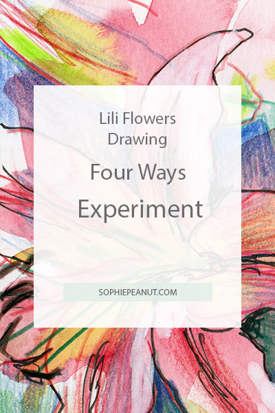 Lili flower drawing - Four ways experiment by Sophie Peanut Artist and illustrator