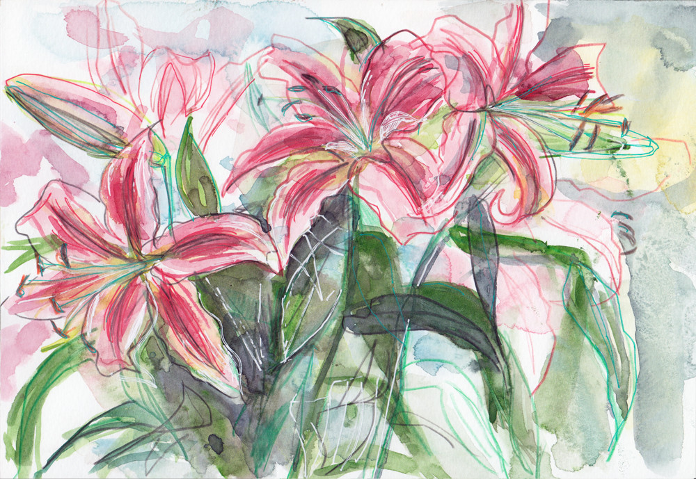 Lily Flower Drawing - Pencil and Watercolour by Sophie Peanut