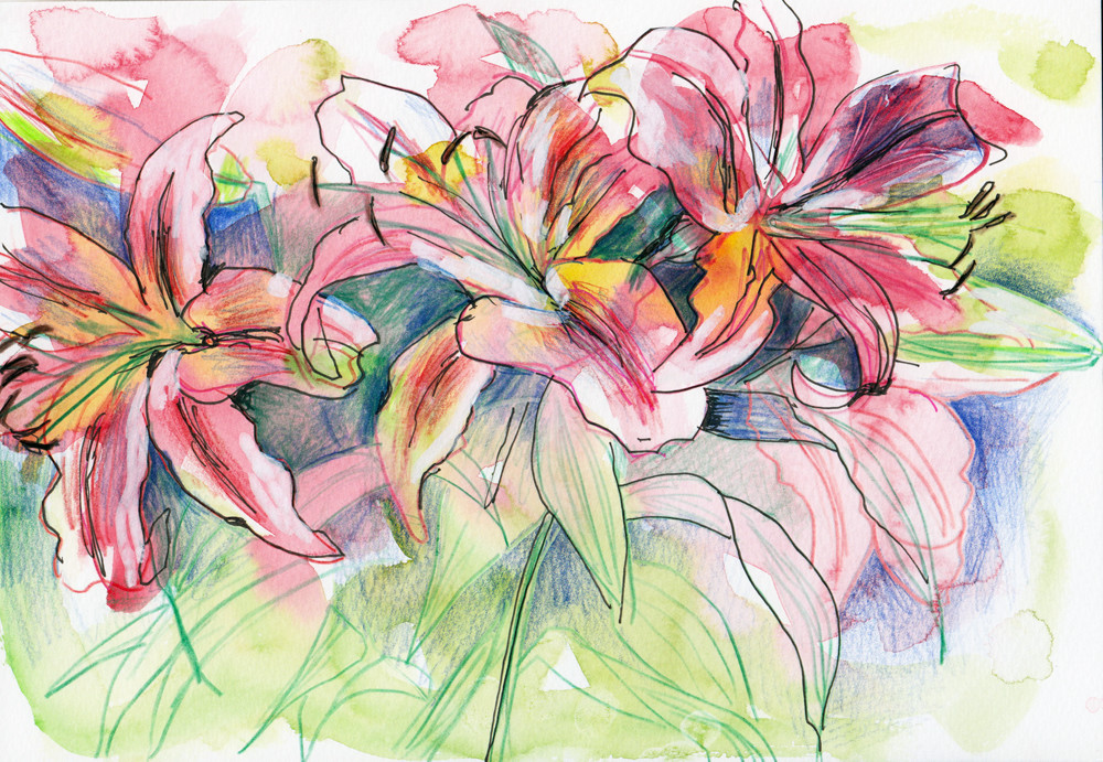 Second flowers in Watercolour, pencil and black pen By Sophie Peanut