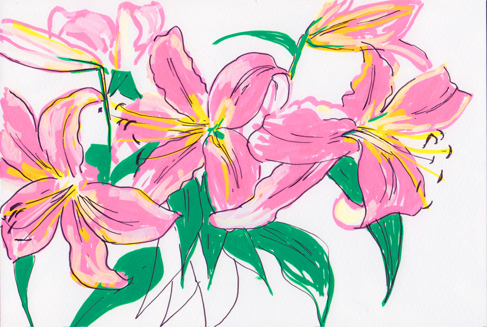 Lily drawing Posca pens and fine liner by Sophie Peanut