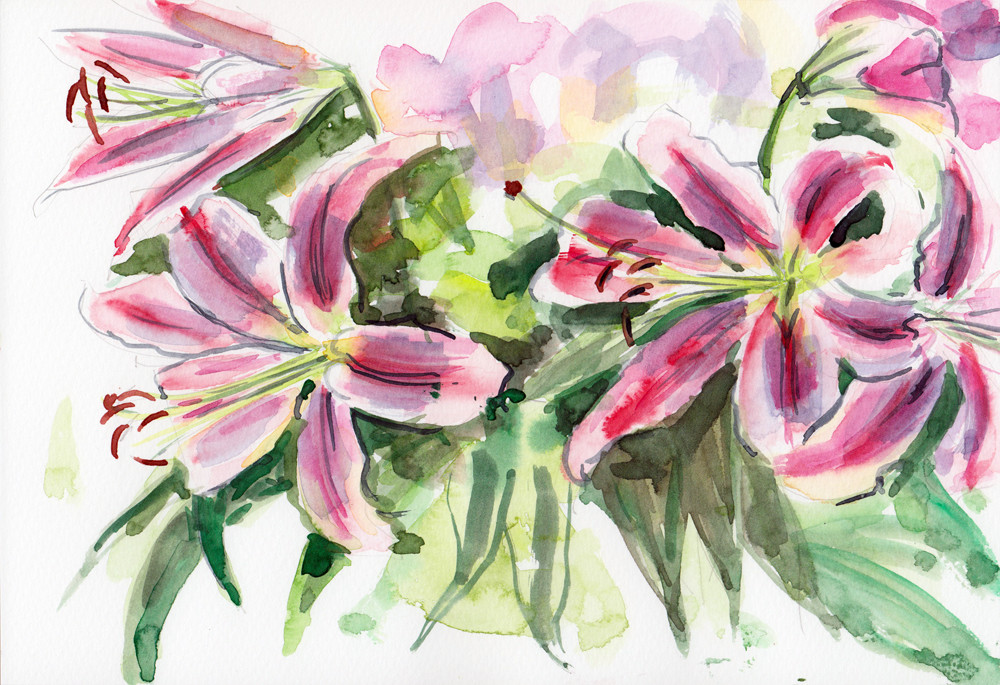 Lilies - watercolour study by Sophie Peanut