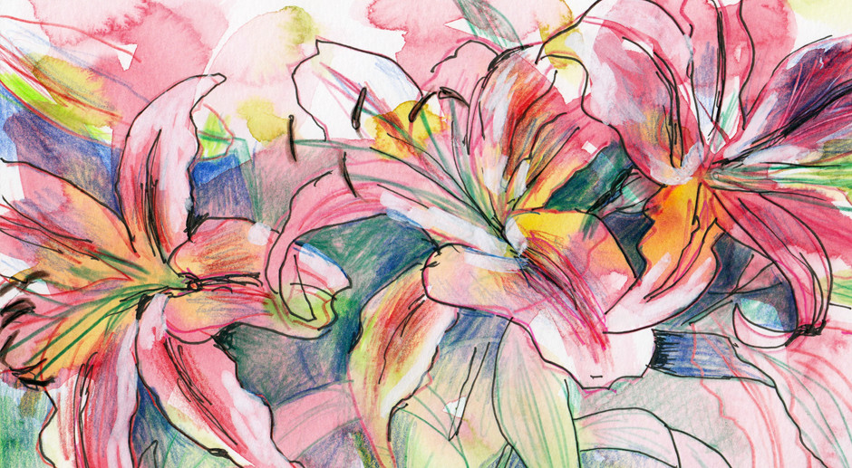 Lily Flower Drawing – Four Ways