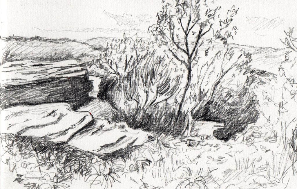 Texture drawing - a pencil landscape sketch by Sophie Peanut