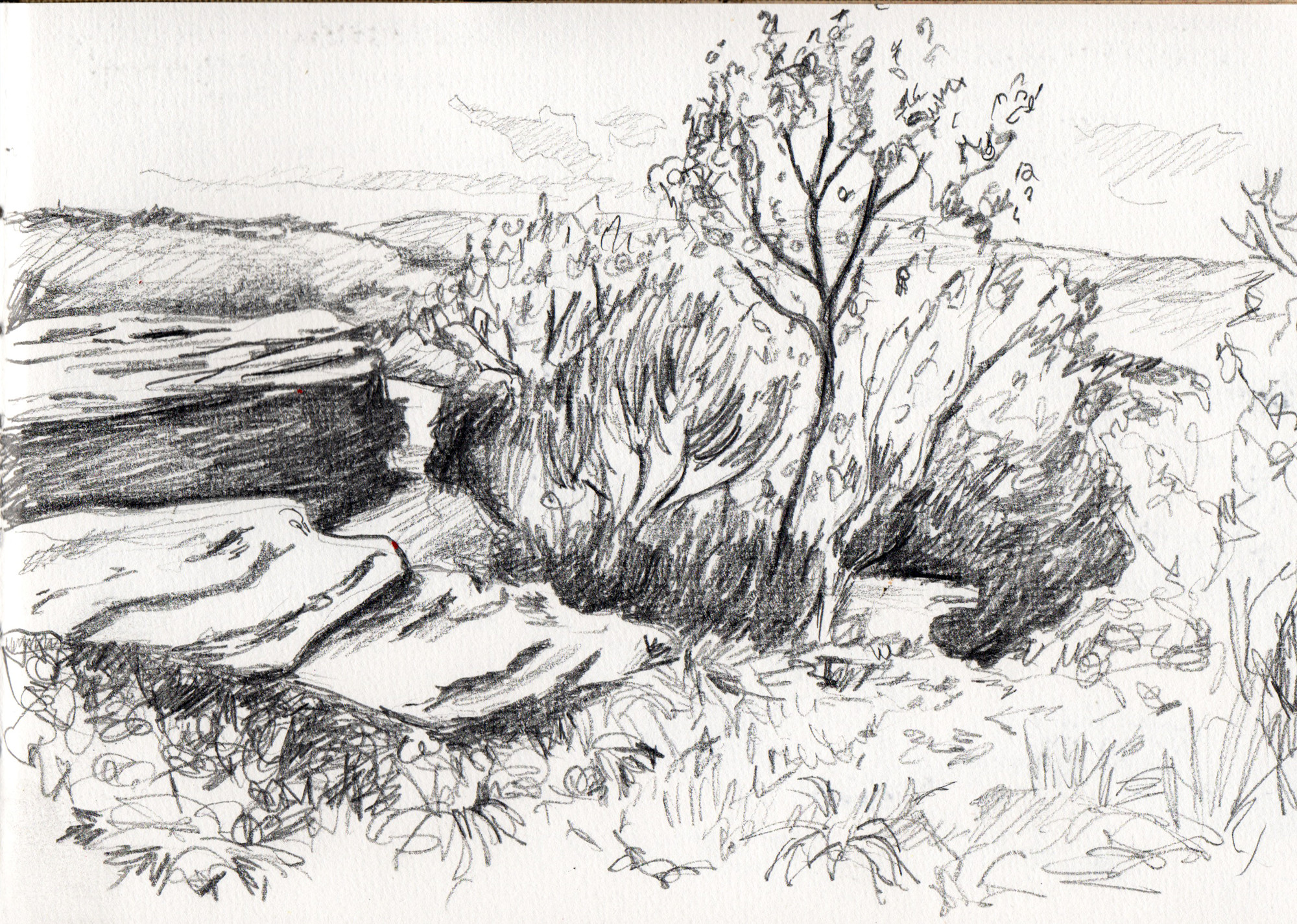 Drawing Texture - Landscape Sketches For Beginners - Pen ...