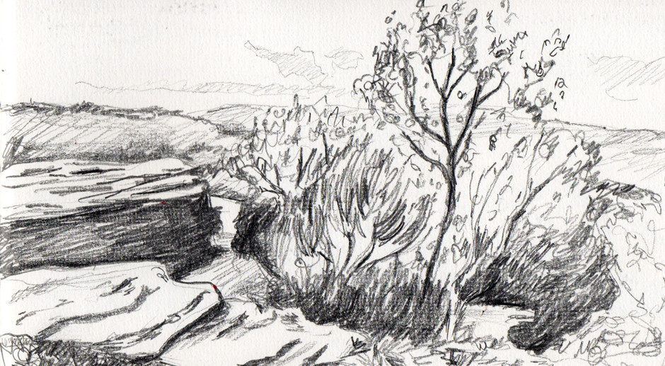 Drawing Texture – Landscape Sketches For Beginners