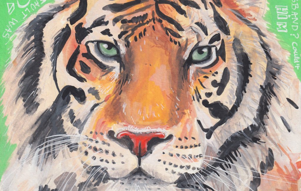 Tiger - Illustration by Sophie Peanut